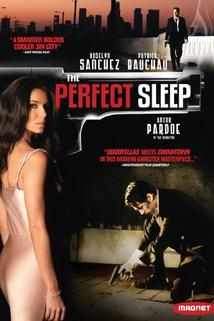 The Perfect Sleep  - The Perfect Sleep
