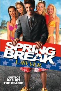 Spring Break Lawyer