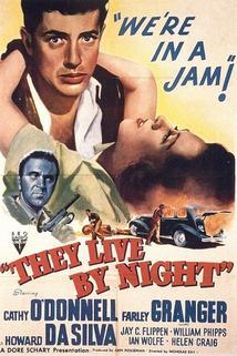 Žijí v noci  - They Live by Night