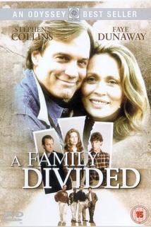 Rozdělená rodina