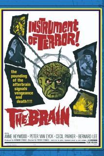 The Brain  - The Brain