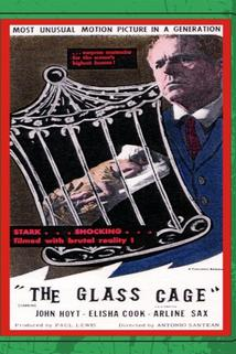 The Glass Cage  - The Glass Cage