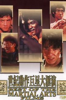 To nejlepší z bojových umění  - Best of the Martial Arts Films, The