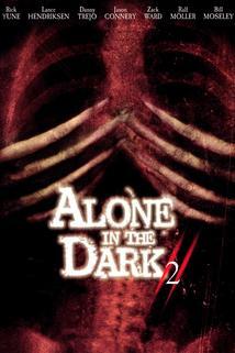 Sám v temnotě 2