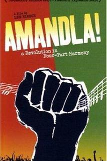 Amandla! A Revolution in Four Part Harmony