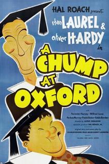 Laurel a Hardy studují