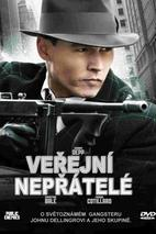 Plakát k filmu: Veřejní nepřátelé