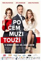 Plakát k filmu: Po čem muži touží