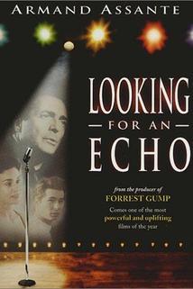 Čekání na ozvěnu  - Looking for an Echo