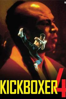 Kickboxer 4: Agresor
