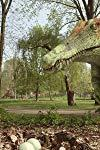 Dino Dana - Dinos of a Feather - Dino Baby Talk  - Dinos of a Feather - Dino Baby Talk