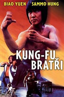 Kung-fu bratři