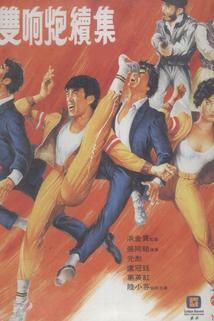 Shen yong shuang xiang pao xu ji