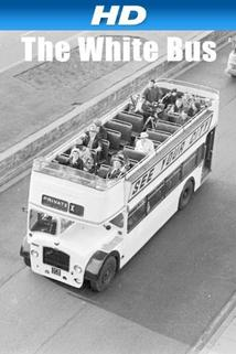 Bílý autobus