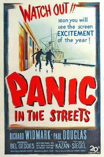 Panika v ulicích