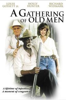 Shromáždění starých mužů  - Gathering of Old Men, A