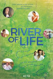 River of Life - Loire