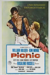 Plakát k filmu: Piknik