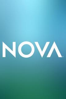 Nova  - Nova