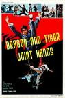 The Dragon and Tiger Joint Hands