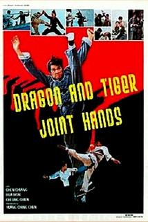 The Dragon and Tiger Joint Hands  - The Dragon and Tiger Joint Hands