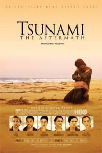 Tsunami: Následky