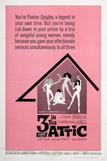 Three in the Attic