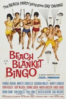 Velké plážové bingo