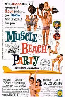 Plážová párty 2