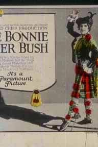 The Bonnie Brier Bush