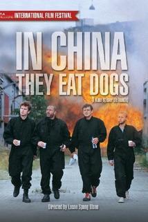 V Číně jedí psy