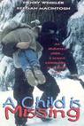 Únos dítěte (1995)