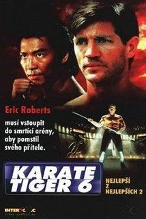 Karate tiger 6: Nejlepší z nejlepších 2
