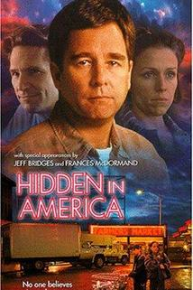 Hidden in America  - Hidden in America