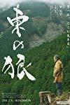 Higashi no ohkami