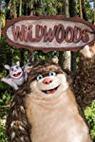 Wildwoods (2017)