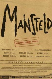 Mansfeld - z vyššího hlediska