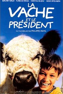 Kráva a prezident