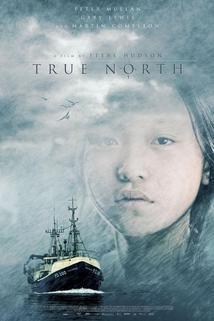 Krutý sever