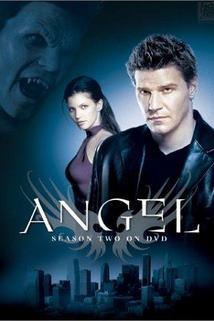 'Angel': Season 2 Overview
