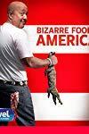Bizarre Foods America ()
