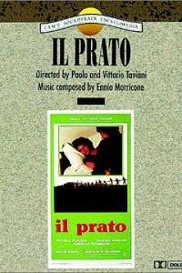 Prato, Il