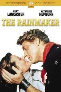 Obchodník s deštěm  - The Rainmaker