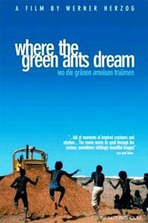 Kde sní zelení mravenci