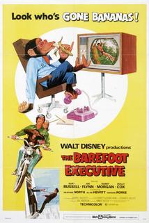 Chlupatý poradce  - Barefoot Executive, The