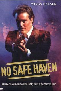 Nikam se neukryješ  - No Safe Haven