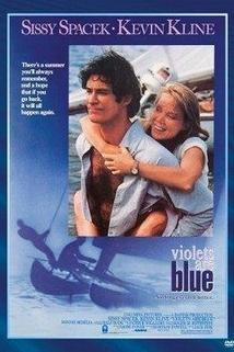 Modré fialky