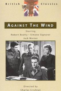 Proti větru