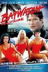 Pobřežní hlídka (1989)