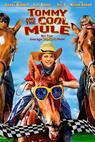 Mule Boy